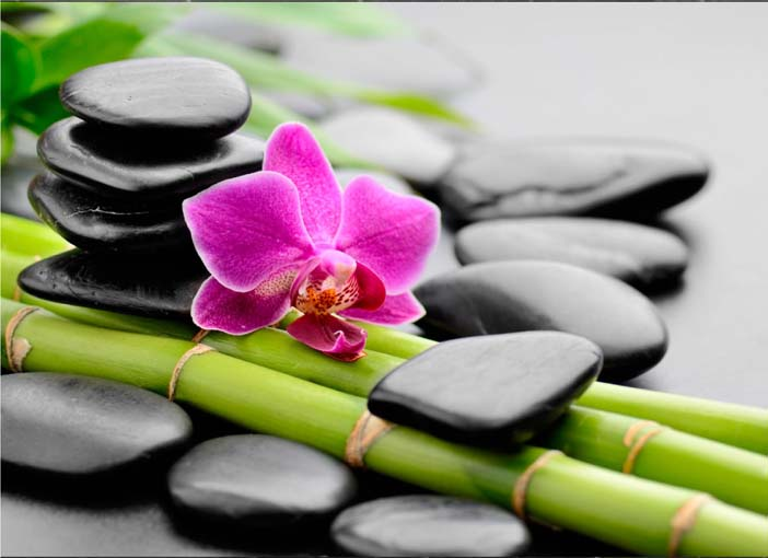 Orchidea a bambuszon - vászonkép